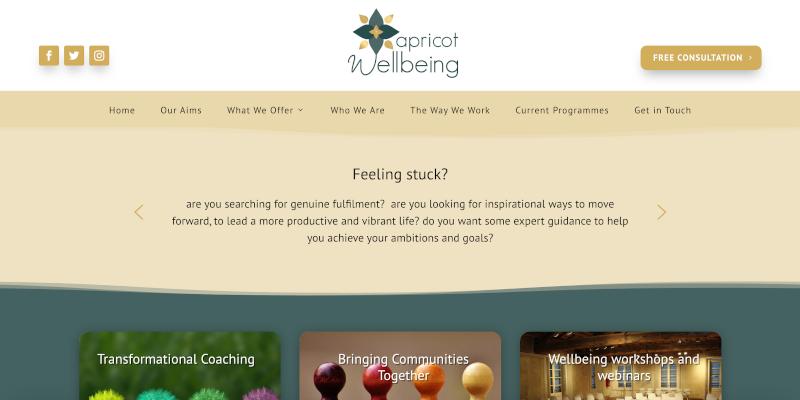 Portfolio: Apricot Wellbeing